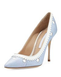 Manolo Blahnik Plataia Snakeskin Pointed Toe Pump Light Blue White Women's