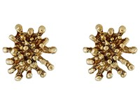 Oscar De La Renta Starfish Button C Earrings Light Gold Earring