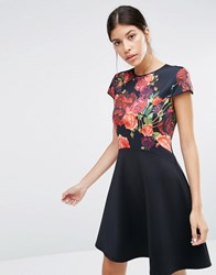 Ted Baker Xylee Skater Dress In Floral Print Purple