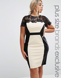 Paper Dolls Plus Bodycon Lace Pencil Dress Nude Pink