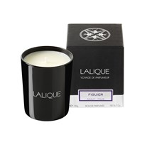Lalique Scented Candle Figuier Amalfi