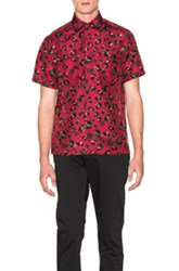 Lanvin Leopard Print Casual Shirt In Red Animal Print