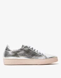 Off White Leather Sneaker In Silver