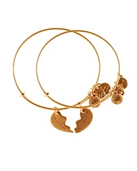 Alex And Ani Best Friends Forever Set Of Two Bangles Charity By Design Collection Rafaelian Gold
