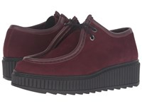 Shellys Kyra Burgundy Women's Lace Up Casual Shoes