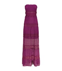 Elie Tahari Lunetta Bandeau Crochet Maxi Dress Female Purple