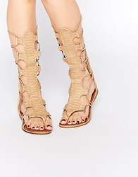 Glamorous Stone Tie Up Ghillie Flat Gladiator Sandals Stone Beige