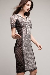 Anthropologie Lace Melange Pencil Dress Black And White
