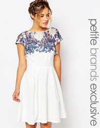 Paper Dolls Petite Lace Detail Prom Dress White