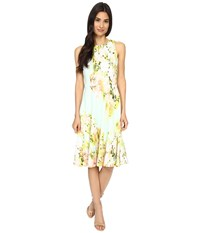 Maggy London Water Wash Garden Printed Scuba Fit And Flare Dress Mint Pink Women's Dress