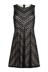 Mela Loves London Lace Sleeveless Dress Black