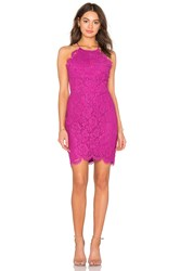 Bobi Black Mixed Chiffon Lace Bodycon Dress Fuschia