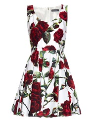 Dolce And Gabbana Rose Print Cotton Mini Dress