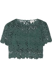 Miguelina Lula Cropped Cotton Guipure Lace Top Emerald