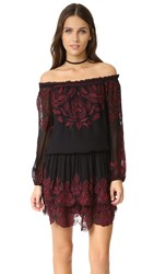 Joie Cassopia Dress Caviar With Cabernet