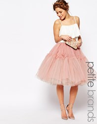 True Decadence Petite Tulle Skirt Mink