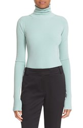 Elizabeth And James Women's Cutout Back Ribbed Turtleneck Mint