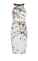 Karen Millen Sakura Dress Multicolour