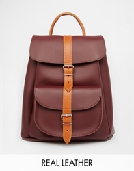 Grafea Leather Backpack In Oxblood With Tan Contrast Stripe Burgundy15