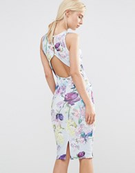Hope And Ivy Pencil Dress With Open Back In Garden Floral Print Blue