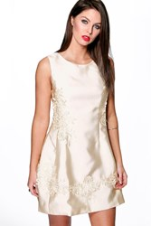 Boohoo Maddie Lace Applique Prom Dress Ivory