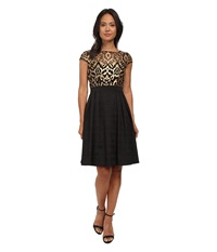 Adrianna Papell Baroque Leather Illusioni Fit And Flare Black Gold Women's Dress