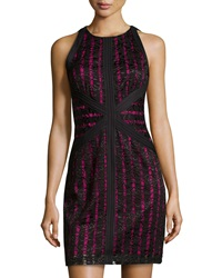 Muse Lace Sleeveless Dress Black Cerise