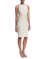 Rachel Gilbert Aubree Embellished Sheath Dress Ivory Women's