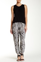 Eight Sixty Animal Print Pant Multi