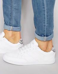 Boxfresh Creeland Trainers White