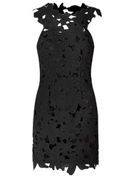 True Decadence Lace Crochet Bodycon Dress Black