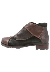 Everybody Ankle Boots Testa Di Moro Brown