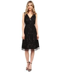 Adrianna Papell Netting Overlay Juliet Lace Fit And Flare Dress Black Pale Pink Women's Dress