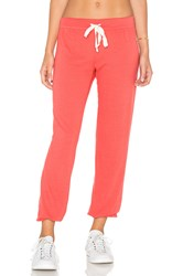 Nation Ltd. Medora Capri Sweatpant Coral