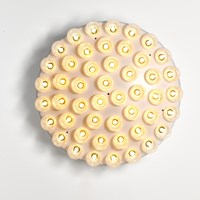 Moooi Prop Light Round Wall Light