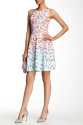 Gerard Darel Sleeveless Floral Fit And Flare Dress Multi