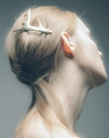 Fancy Antler Hair Clip by c2 a0Pluie