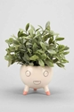 Assembly Home Sweet Scandinavian Planter Urban Outfitters