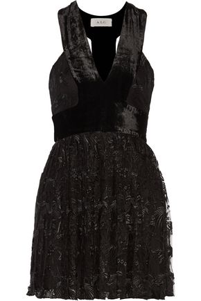 Wyatt Pleated Tulle Dress A L Mini Embroidered Velvet Black C Paneled wqwZFfx