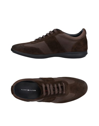 Hilfiger Sneakers Sneakers Cocoa Tommy Hilfiger Tommy Tommy Sneakers Cocoa Cocoa Tommy Hilfiger t0qTXTx