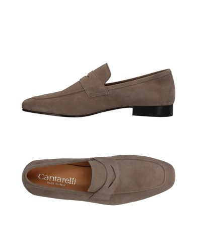 Cantarelli Loafers Grey xmzeb95m