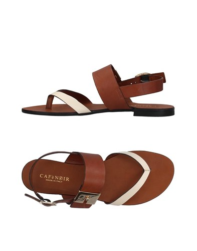 Brown Sandals CAFe'NOIR Cafenoir Toe Strap wxaqWAXn6H