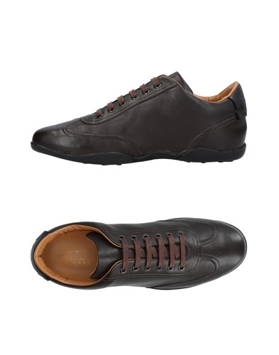 Harry's of London Harrys Sneakers Dark Brown LeNWWuhU