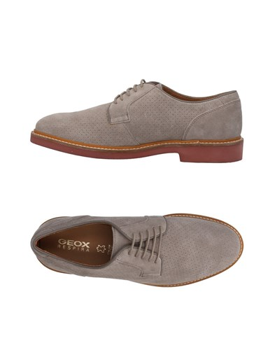 Geox Lace Lace Up Grey Shoes Geox 7xqd0