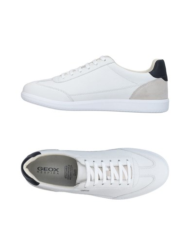 Geox Sneakers White Obz48r