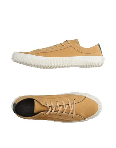 SPINGLE MOVE Sneakers Beige qYoijesEW