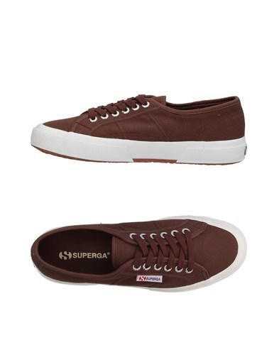 Superga Footwear Low Tops And Sneakers Cocoa 5dRzluoq
