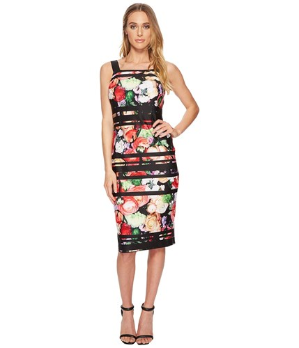 Adrianna Papell Striped Botanical Scuba Sheath Black Multi Dress gpxVY