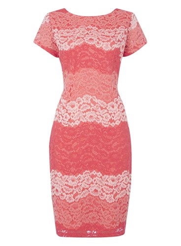 Dorothy Perkins Roman Originals Coral Stripe Lace Dress xSVbLS