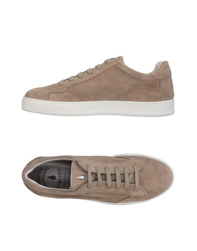 Botticelli Sport Limited Sneakers Grey yetvGa